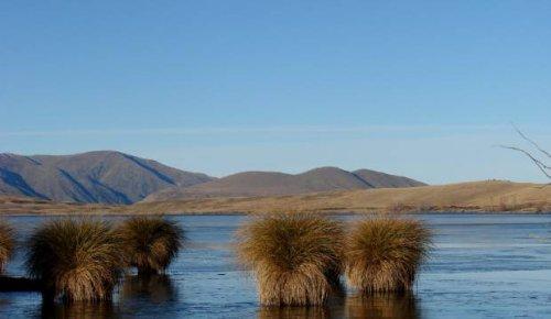 Urgent action needed to stop Ashburton lakes 'turning to sludge'