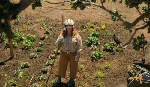 The Starling: Melissa McCarthy battles grief and an avian foe in Netflix dramedy