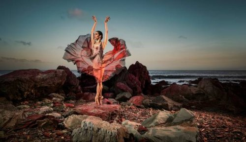 Culture Calendar: What to make time for in Auckland this August