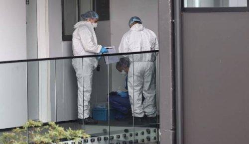 Birkenhead disorder incident: Victim was owner of Auckland hotpot restaurant chain