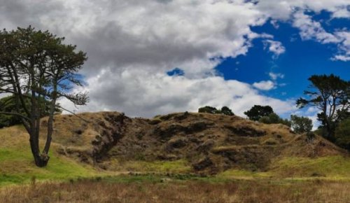 Exotic tree removal will restore mauri to Ōtāhuhu/Mt Richmond: Maunga Authority