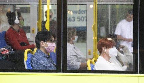 Like Monty Python's parrot, Wellington's bus system is definitely deceased