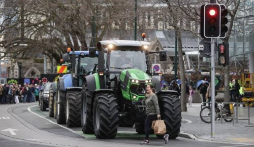 Groundswell's Mother Of All Protests will go ahead despite Covid-19 restrictions