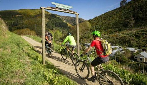 Few easy options for beginner mountainbikers in Nelson