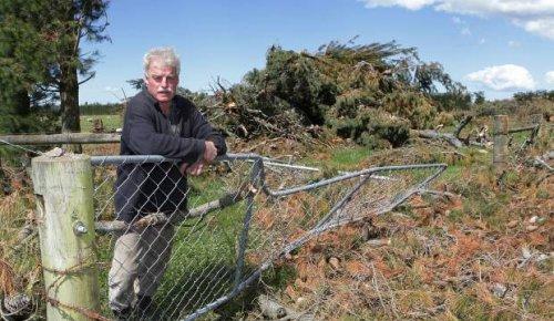 Farmer killed by falling tree in rural Canterbury named