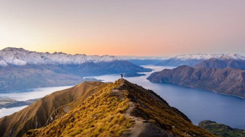 'Can I become a citizen?': World reacts to Tourism New Zealand's plea to ditch influencer shots
