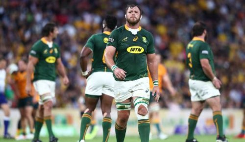'Awful' Springboks hammered at home as they seek redemption against All Blacks