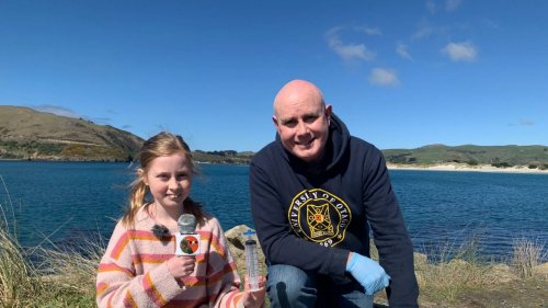 Kea Kids News: How DNA can solve the mystery of nature's 'monsters'