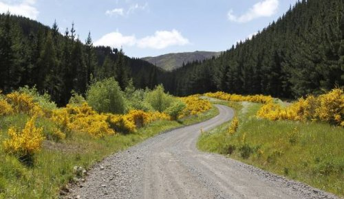 Rural roads may suffer as transport funding hole opens