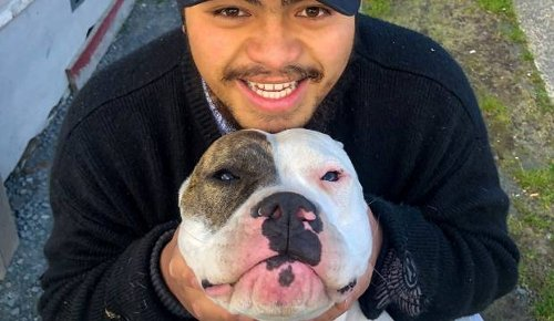 Son's promise to late father in balance as dogs wait on death row