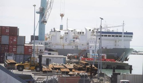Anti-live shipment protests planned across New Zealand