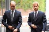 Prinz Harry und Prinz William: Brachte Englands Achtelfinalsieg die Brüder zusammen?