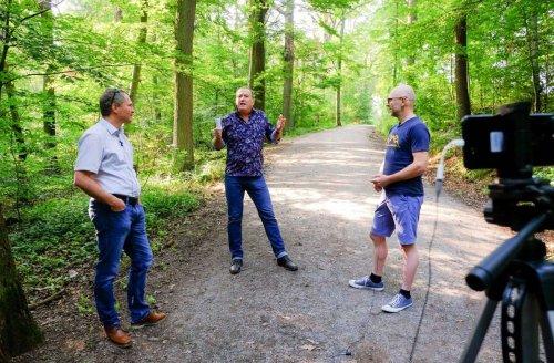 Mountainbiker vs. Förster: Wem gehört eigentlich der Wald?