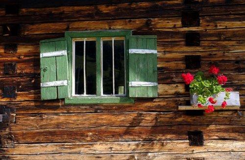 Übermorgen: die Nachhaltigkeits-Kolumne: Kann Bauen mit Holz die Klimaziele retten?