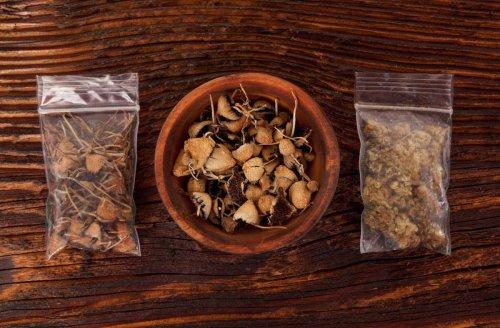 """Mögliche Cannabis-Legalisierung: """"Bald reden wir über Koks und Pilze"""""""
