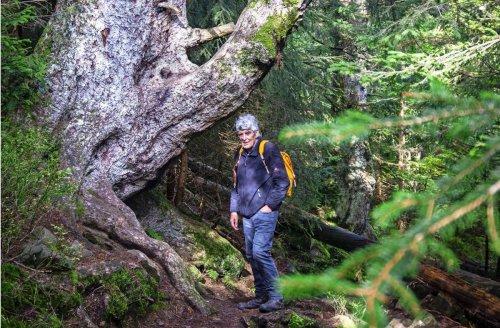 Naturschützer Wolf Hockenjos: Der alte Mann und der Wald