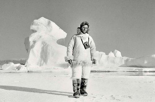 Beeindruckende Bilder aus Grönland: Suchbild mit Hunden