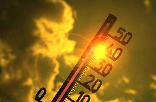 Hitzewelle in Deutschland: Wird im Juni die 40-Grad-Marke geknackt?