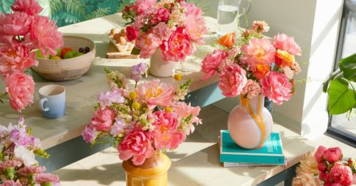 The best places to get pink peonies (and how to care for them)