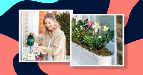 Create a perfect window box in 6 easy steps to spruce up your home this summer