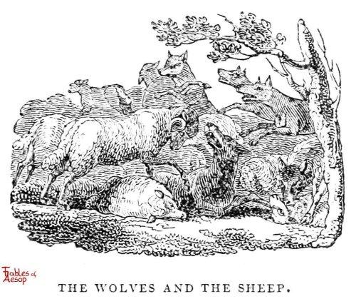 Twitter Chronicles, Vol. I: A Sheepdog amongst Wolves