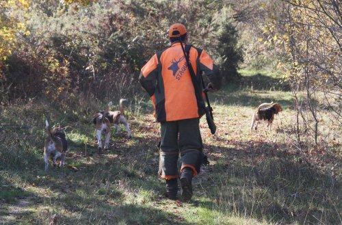 Dordogne : de nouvelles dispositions pénales pour encadrer la chasse