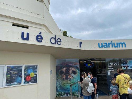 Biarritz : le coup de colère du directeur de l'Aquarium