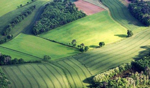 Dordogne : le concours photo du salon de l'agriculture prime Loïc Mazalrey