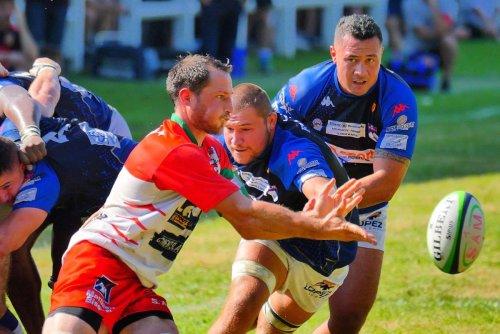 Rugby (Fédérale 1) : Mauléon accueille Anglet pour le derby basque de ce samedi