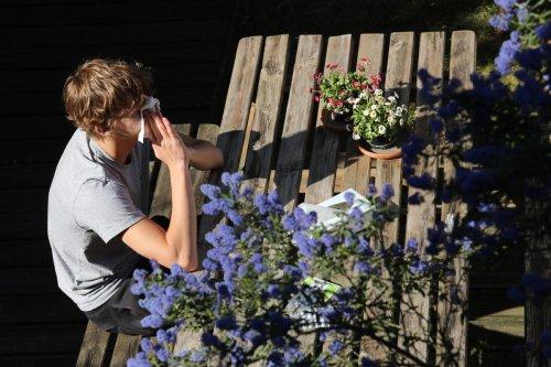 Santé : les allergies aux pollens ont démarré, mais elles n'ont rien à voir avec le Covid