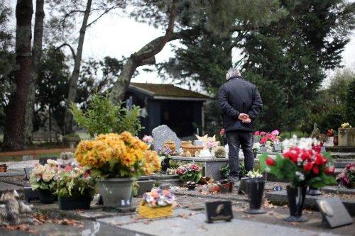 Gironde : l'histoire rocambolesque de l'inhumation du chien Félix dans le caveau familial