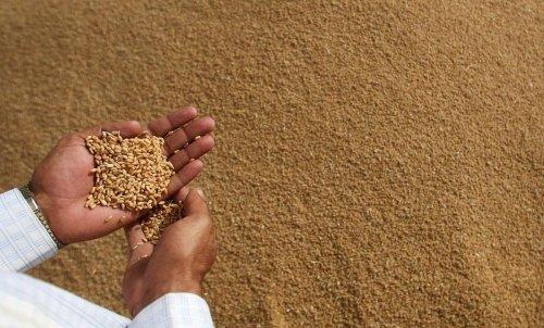 Céréales, lait… Pourquoi la flambée des prix des matières agricoles est inquiétante ?