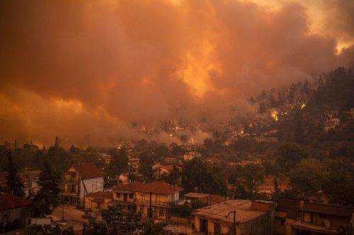 Incendies en Grèce : la ville de Gouvès engloutie par le feu, la mer seule issue