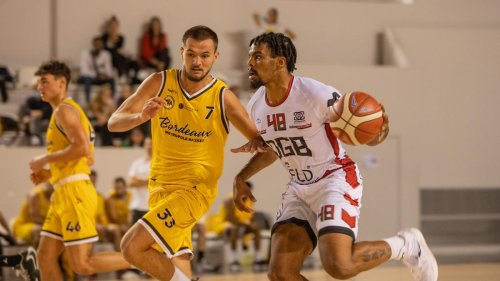 Basket-ball / Nationale 1 : Dax-Gamarde prend une correction à Toulouse