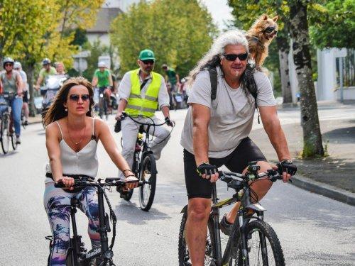 Anglet : « Pour que les gens préfèrent le vélo, il faut de la sécurité et de la continuité dans le réseau »