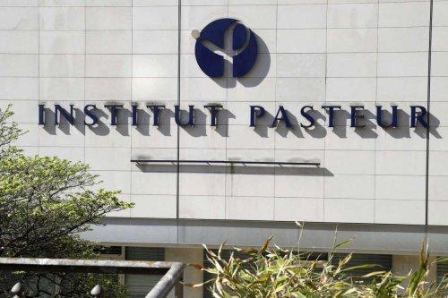 Covid-19 : une 4e vague « moins importante » que les précédentes, prévoit l'Institut Pasteur