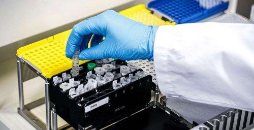 Covid-19 : un projet de médicament de l'Institut Pasteur de Lille labellisé « priorité nationale de recherche »