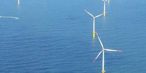 Projet de parc éolien en mer du Nord : six partis « exigent » un référendum local