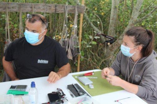 Saint-Sorlin-de-Conac : un camp d'étude des oiseaux migrateurs sur le site de Vitrezay