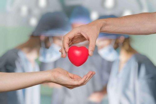 2020 : la baisse (transitoire) des prélèvements d'organes