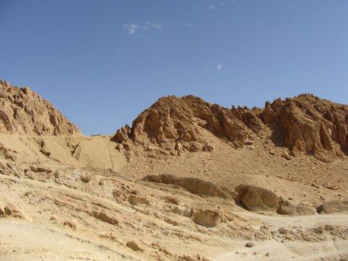 Arabie : les sculptures préhistoriques monumentales du Camel Site seraient les plus anciennes au monde