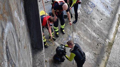 München: Kini-Kopf aus Isar gezogen