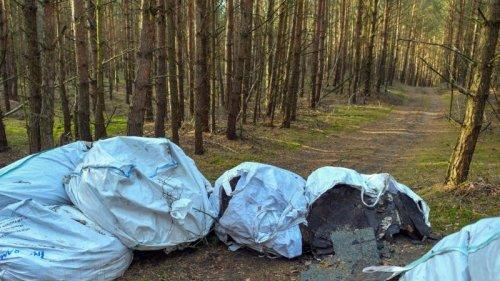 Förster holen Tausende Kubikmeter Müll aus den Wäldern