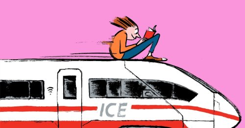 Der Schmuggel-Koffer: eine Zollkontrolle im Zug aus der Schweiz