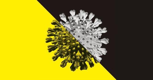Corona  cover image