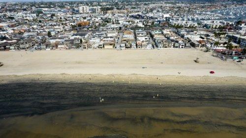 Wirtschaftskriminalität:Warum Lokalzeitungen für gutes Klima sorgen
