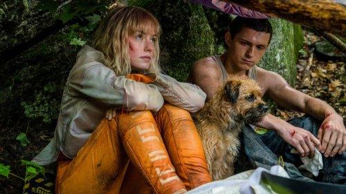 "Im Kino: ""Chaos Walking"":Männer ohne Filter"