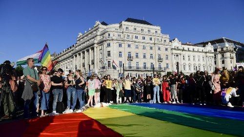 Mit den Stimmen rechter Parteien:Ungarns Parlament stimmt für LGBTQ*-feindliches Gesetz