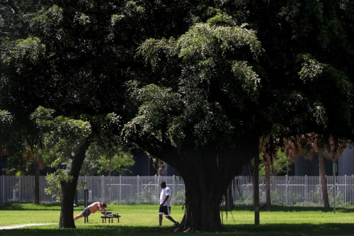 Free events celebrate Pompano Beach parks in July