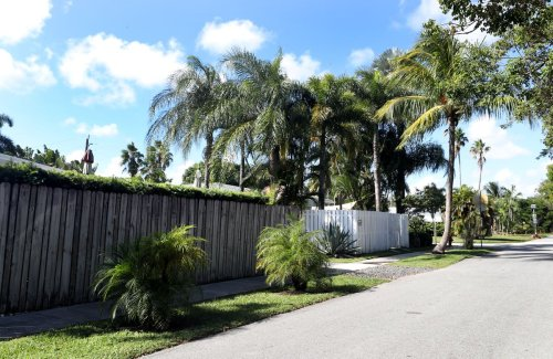 These privacy fences are as tall as Michael Jordan. And they're turning Fort Lauderdale ugly, mayor says